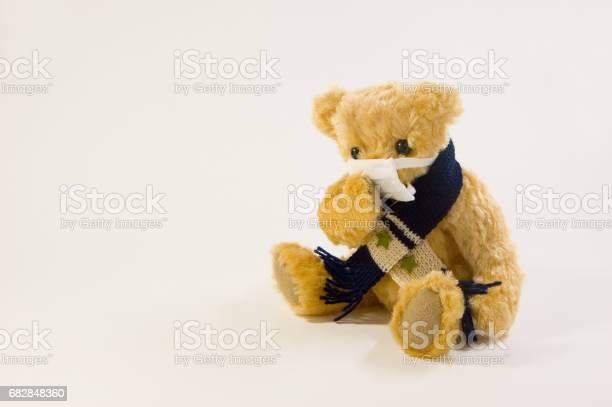 Bear holding a cold picture id682848360?b=1&k=6&m=682848360&s=612x612&h=j5qvjvid1dr3rr zhymyz1sm6jf g04vsft3t ylhbu=