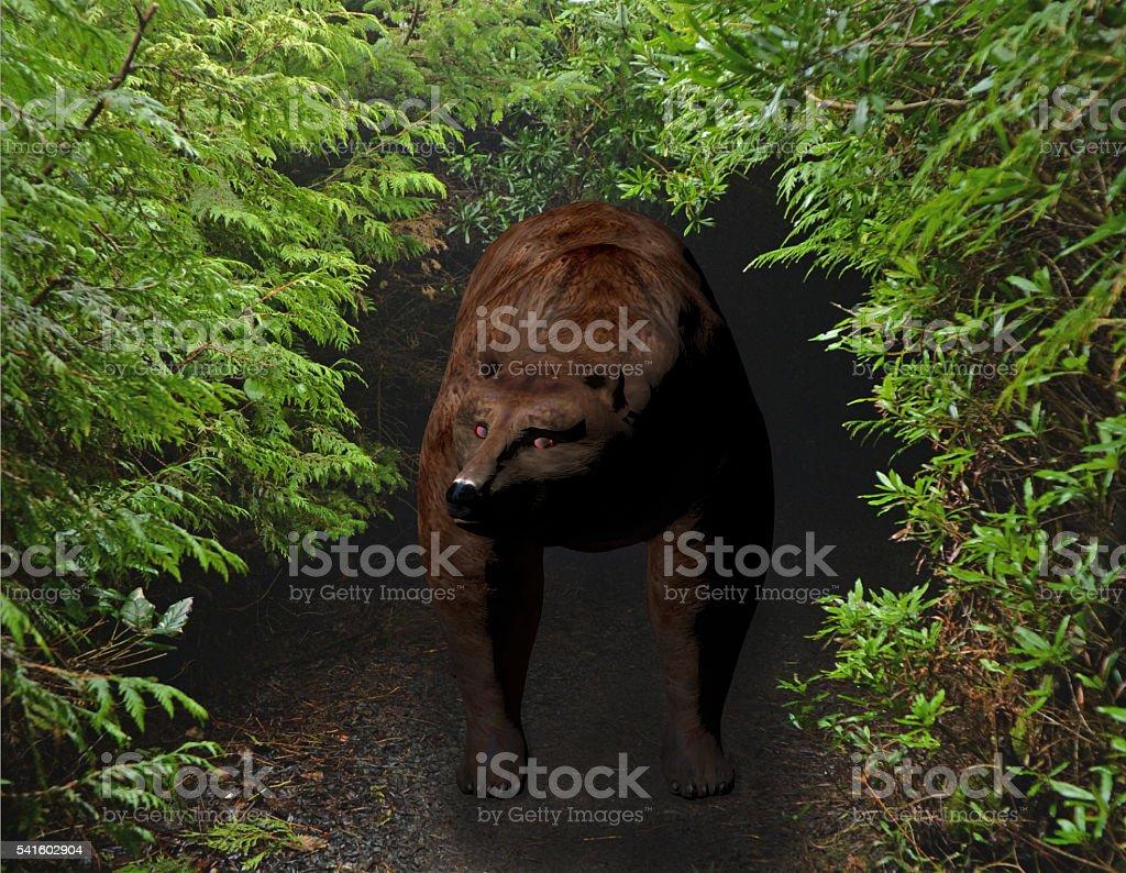 bear in the brush stock photo