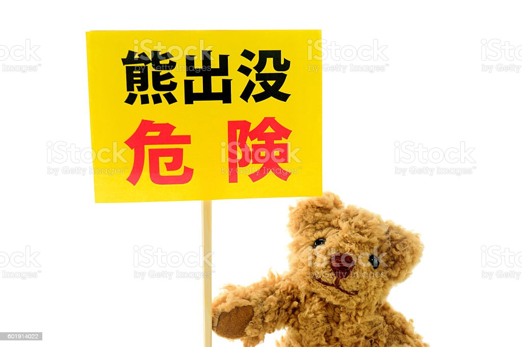 Bear infestation danger! stock photo