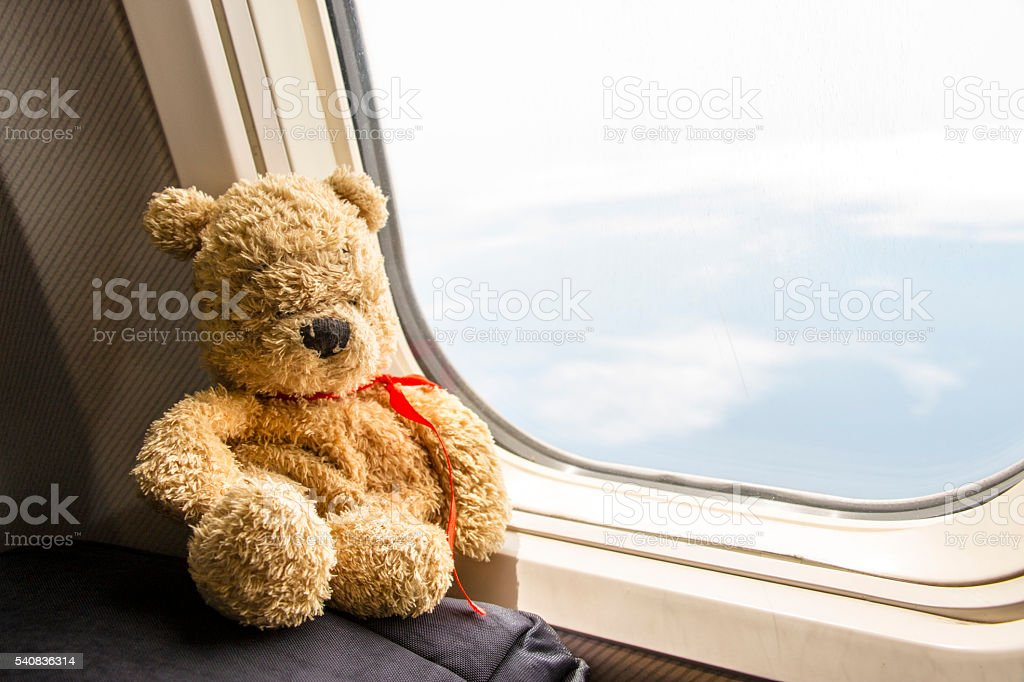 Bear is sitting on the travel bag by the window looking outside with...