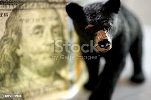 shot of bear figuring standing on financial paper