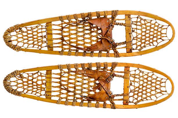 bear paw raquettes - raquette photos et images de collection