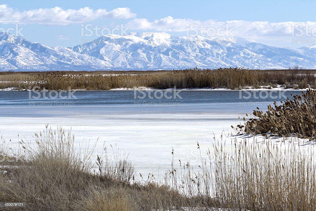 Bear River Migratory Bird Refuge stock photo
