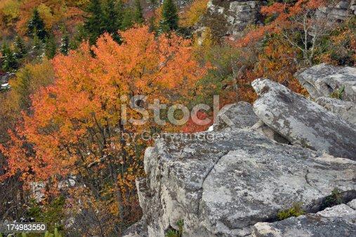 istock Bear Rocks of Dolly Sods Wilderness 174983550