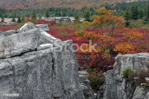 istock Bear Rocks of Dolly Sods Wilderness 175242055