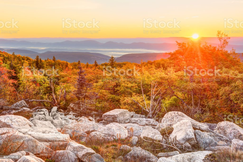 Bear rocks sunrise during autumn with rocky landscape in Dolly Sods, West Virginia stock photo