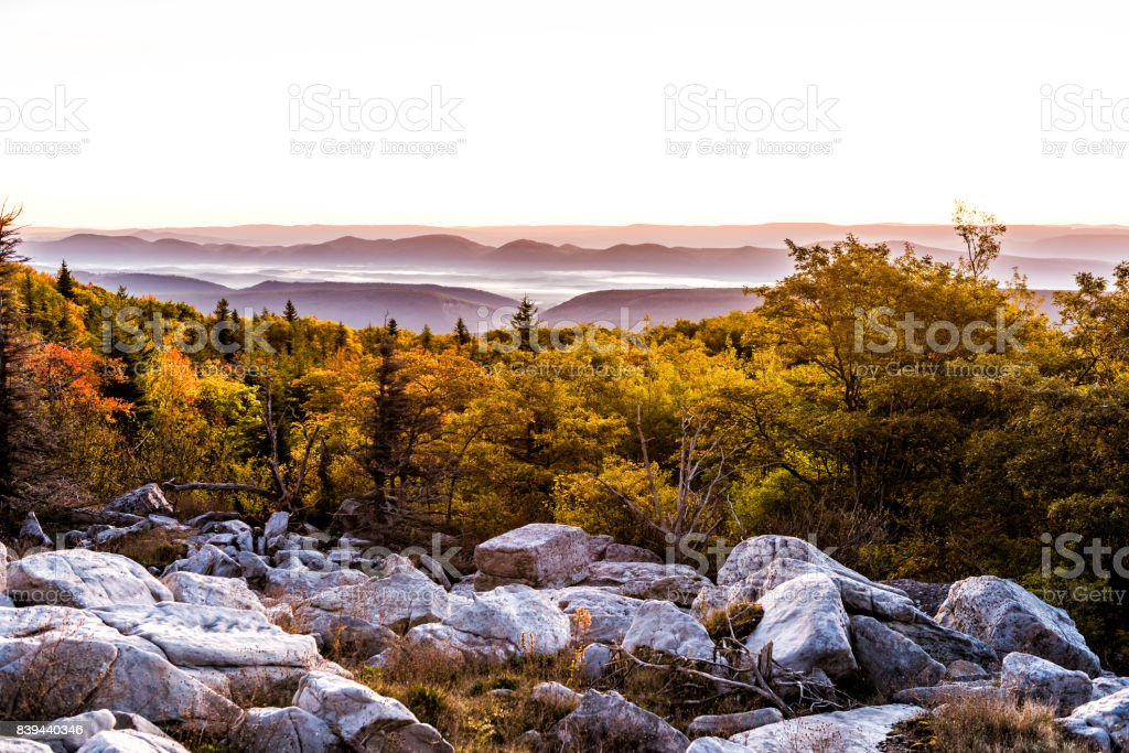 Bear rocks sunrise during autumn with rocky landscape in Dolly Sods, West Virginia with dark trees stock photo