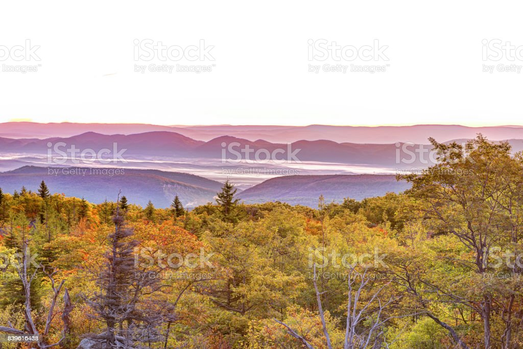 Bear rocks sunrise during autumn with rocky landscape in Dolly Sods, West Virginia with orange trees stock photo