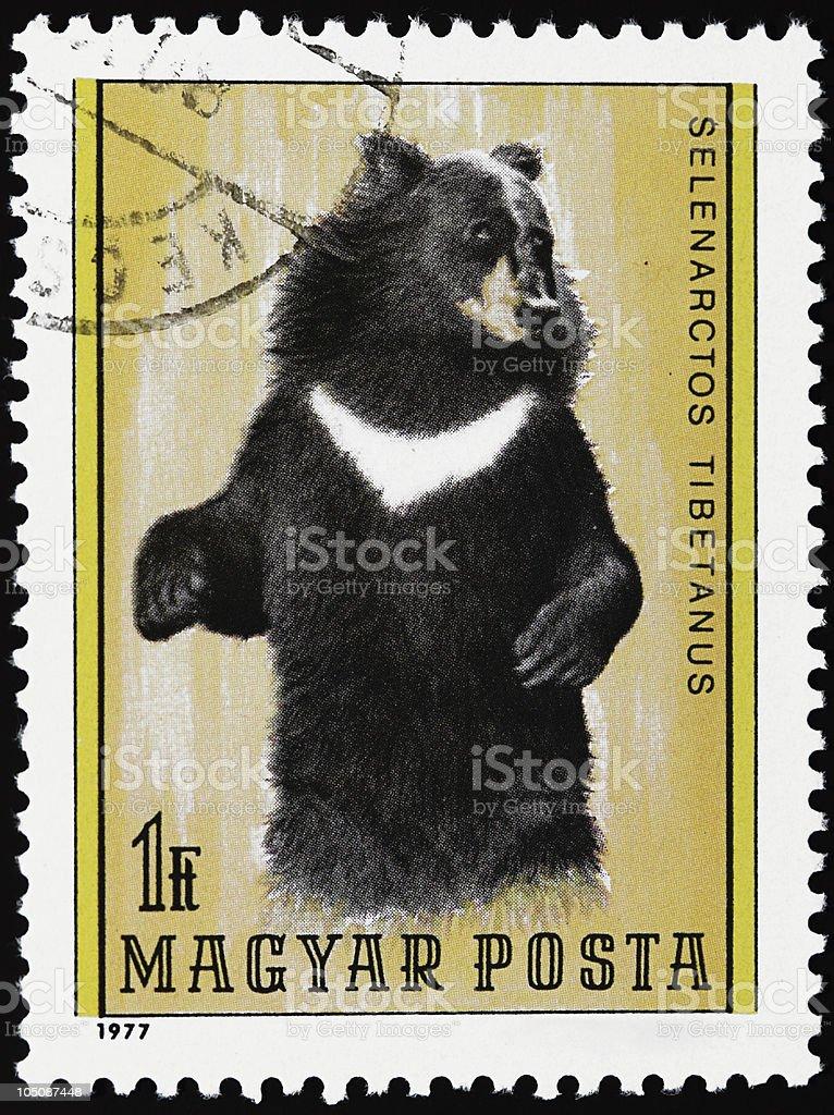 Bear stamp stock photo