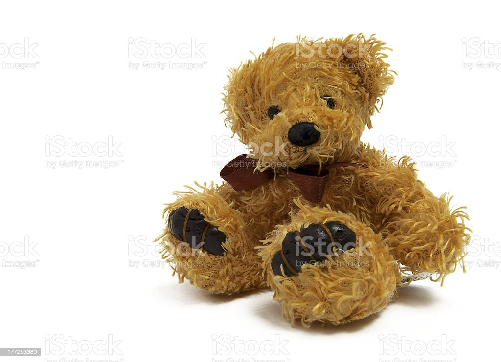 bear toy stock photo