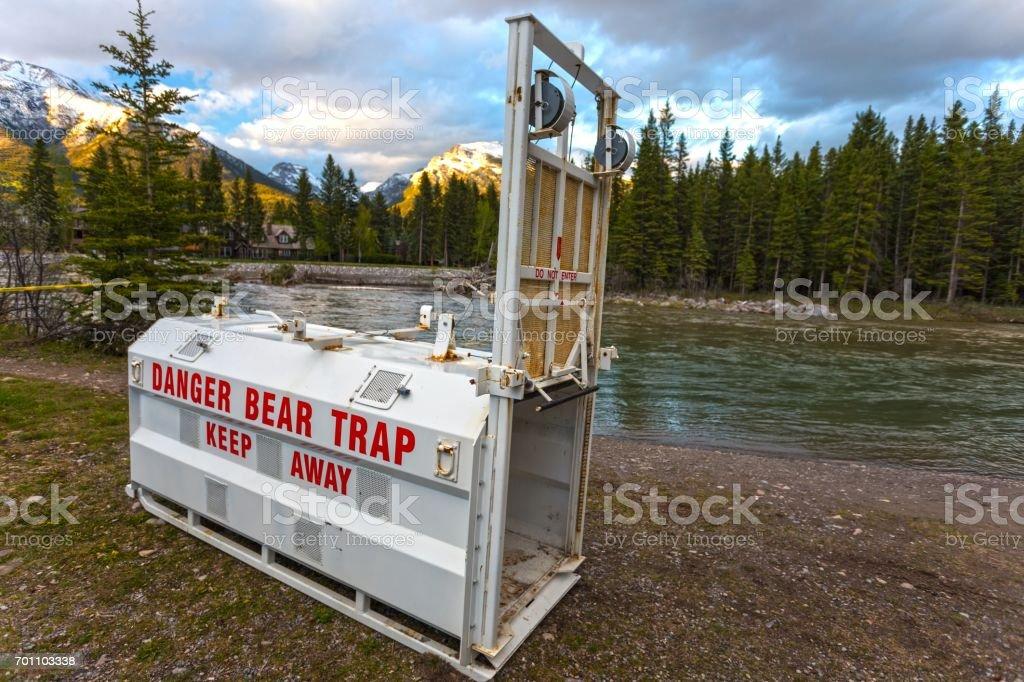 Bear Trap stock photo