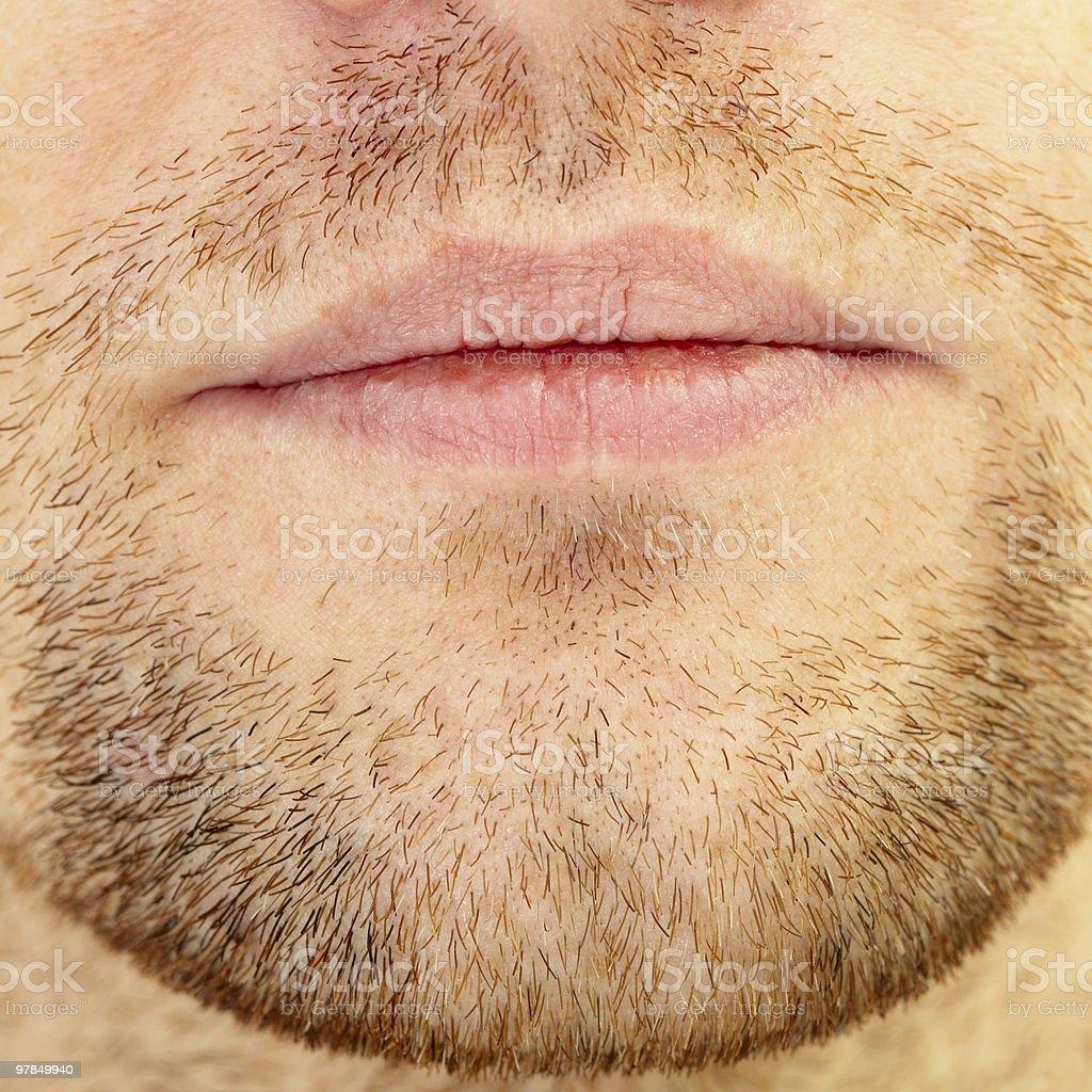 Beard and lips royalty-free stock photo