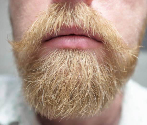 Beard And Moustache stock photo