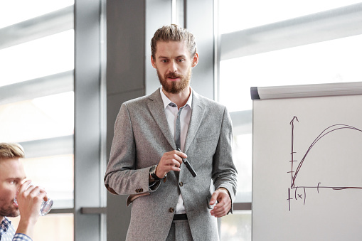 Bearded Businessman Giving Presentation Stock Photo - Download Image Now