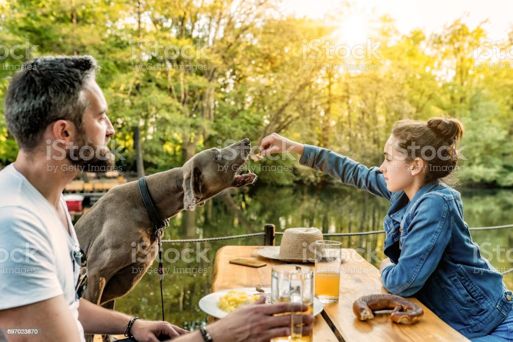 bearded father with teenage daughter and dog eating in beer garden stock photo