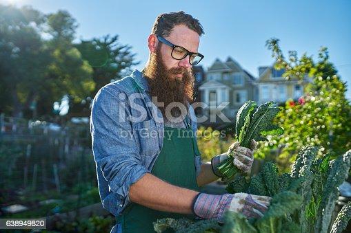 istock bearded man with glasses tending to urban garden 638949820
