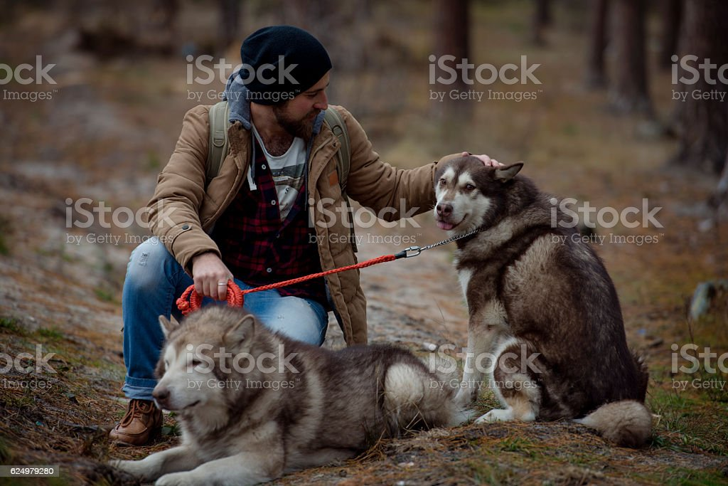 bearded model man with his two dogs in forest stock photo