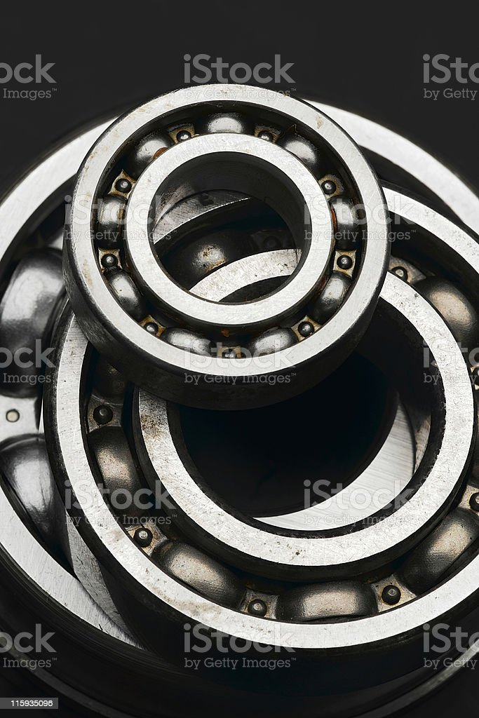 bearing royalty-free stock photo