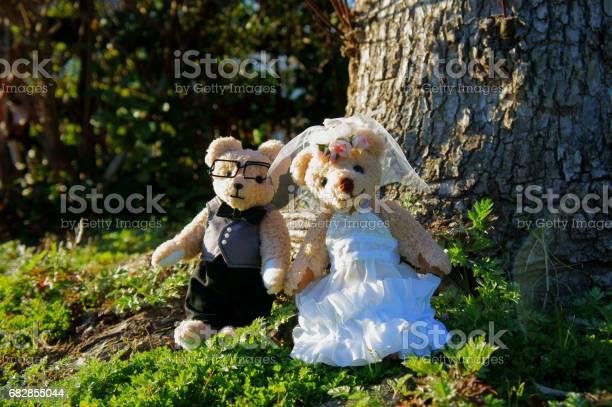 Bears wedding ceremony picture id682855044?b=1&k=6&m=682855044&s=612x612&h=yblfaihtodwuktspx2uwmlm4opoobcpblqssd2jhvp0=