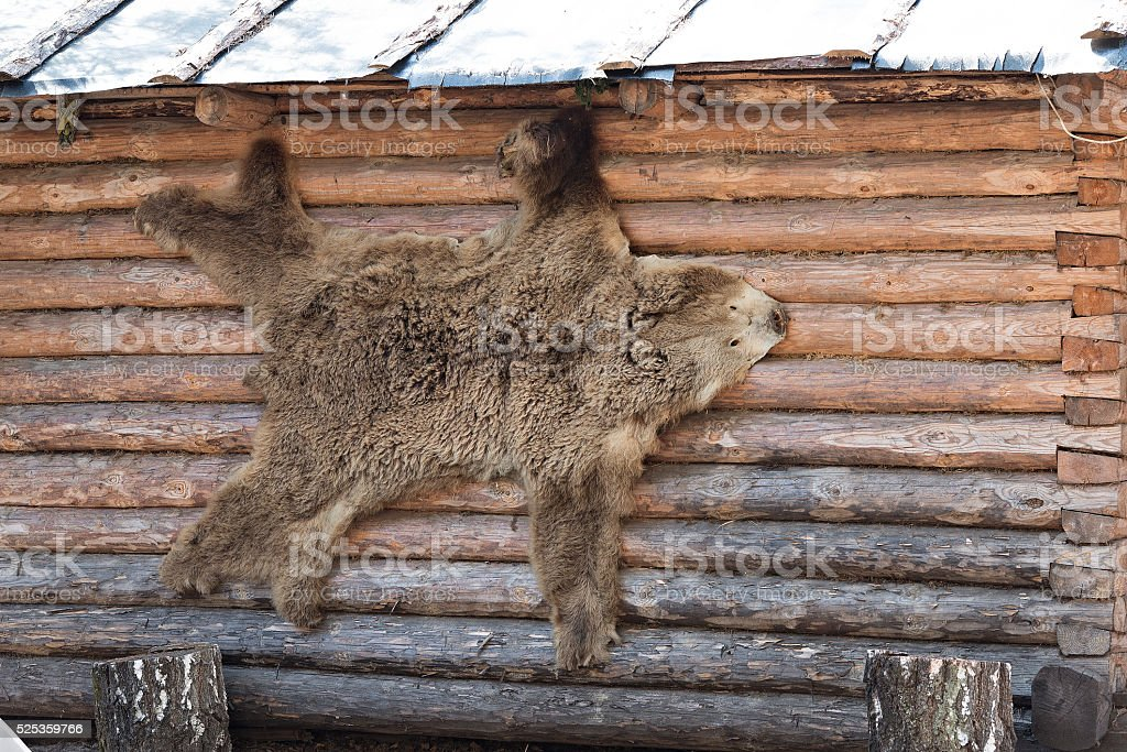 Bearskin rug stock photo