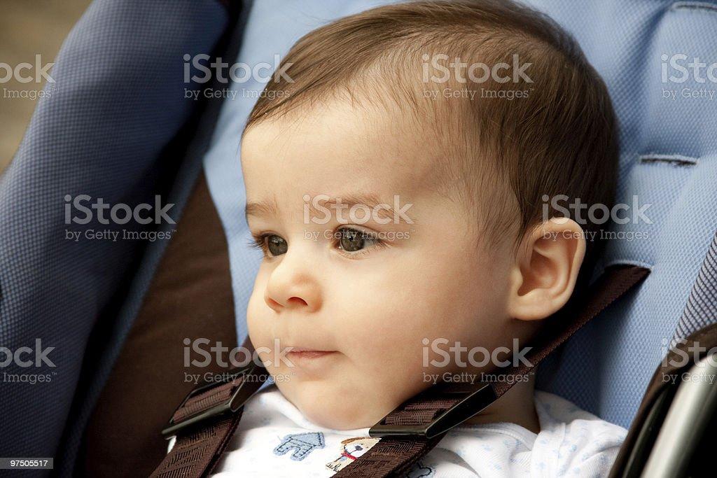 Beatiful boy on his stroller royalty-free stock photo