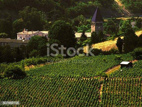 beaujolais vineyards rhone valley france