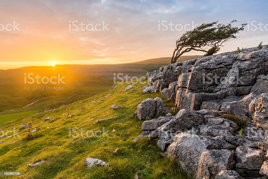 Beautful Golden Vibrant Sunset With Rocks And Isolated Tree. stock photo