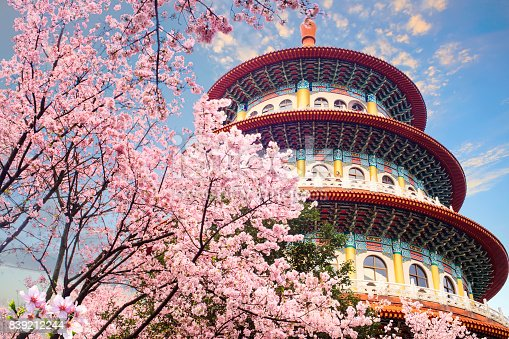 istock beautiflu sakura garden with nice sky in Taipei, Taiwan 839212244