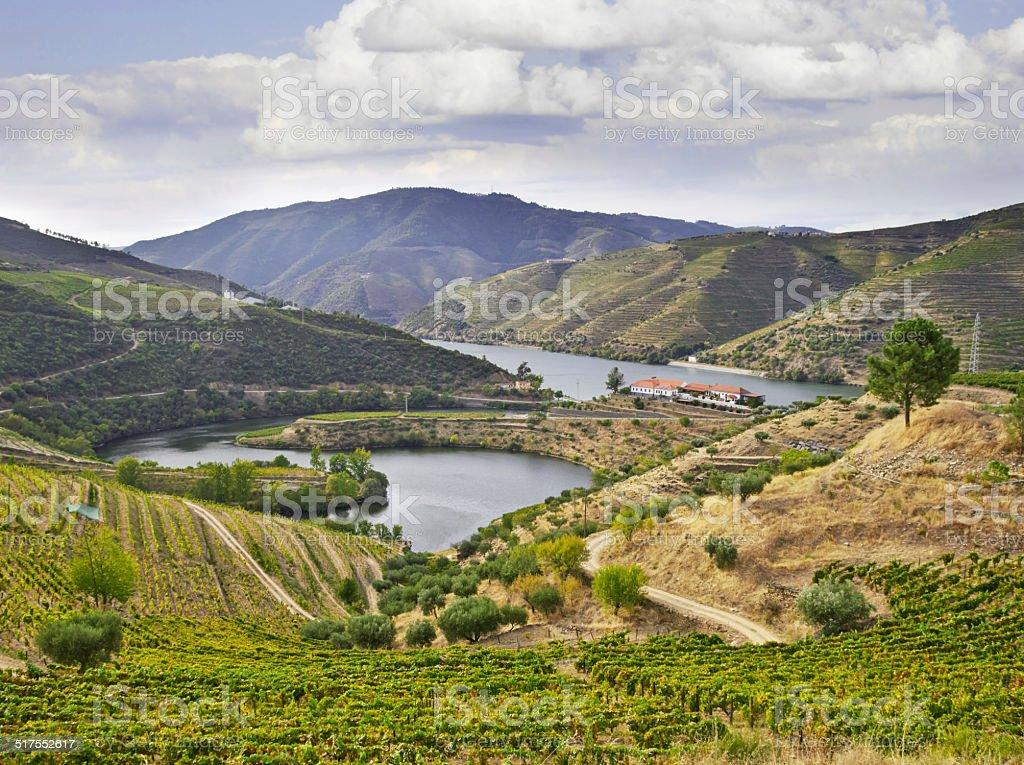 Beautifu landscape in the Douro region stock photo