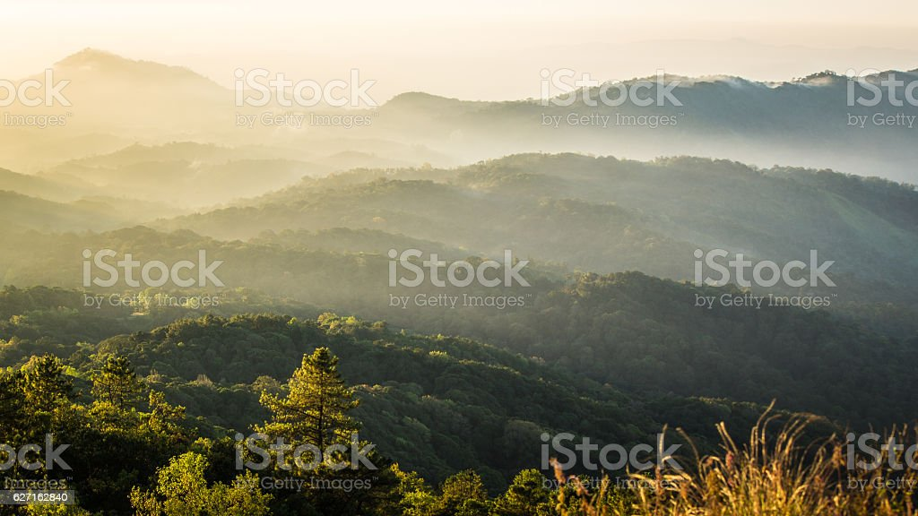 Beautifu sunlight and the mist stock photo