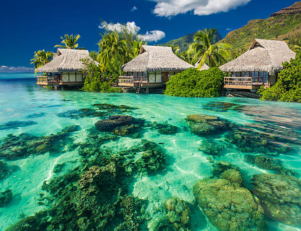 Beautiful above and underwater landscape of a tropical resort Beautiful above and underwater coral landscape of a tropical resort bungalow stock pictures, royalty-free photos & images