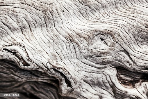 istock Beautiful abstract wooden background 688026050