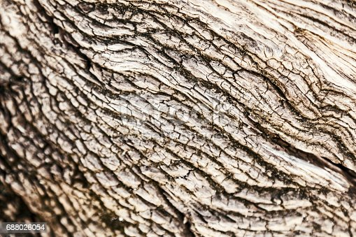 istock Beautiful abstract wooden background 688026054