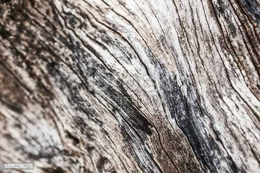istock Beautiful abstract wooden background 688026076