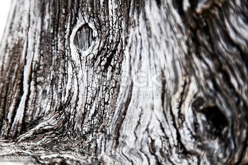istock Beautiful abstract wooden background 688026082