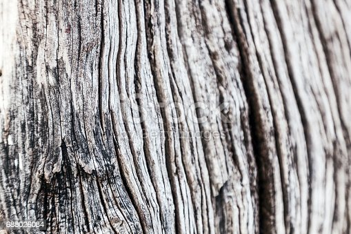 istock Beautiful abstract wooden background 688026084