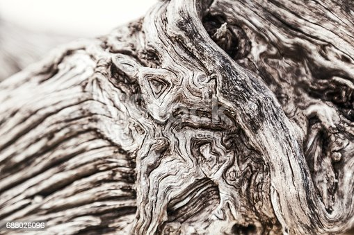 1139298729 istock photo Beautiful abstract wooden background 688026096