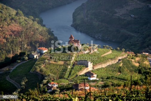 Vineyard in Douro Valley, Portugal - more files in my portfolio
