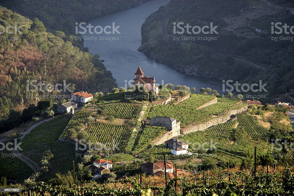 Beautiful aerial landscape shot of Douro Valley stock photo