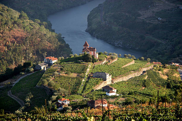 Beautiful aerial landscape shot of Douro Valley Vineyard in Douro Valley, Portugal - more files in my portfolio duero stock pictures, royalty-free photos & images
