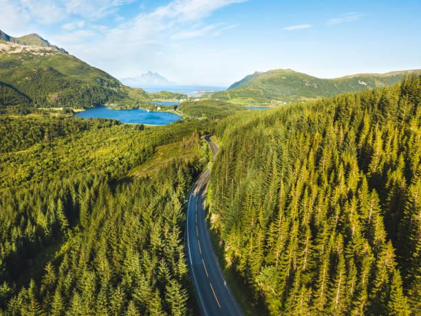 beautiful aerial view of asphalt road in the forest - szwecja zdjęcia i obrazy z banku zdjęć