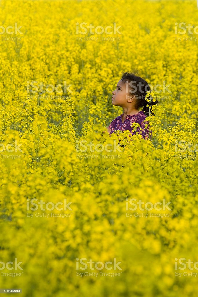 Beautiful African American Interracial Girl In Field Of Yellow Flowers royalty-free stock photo