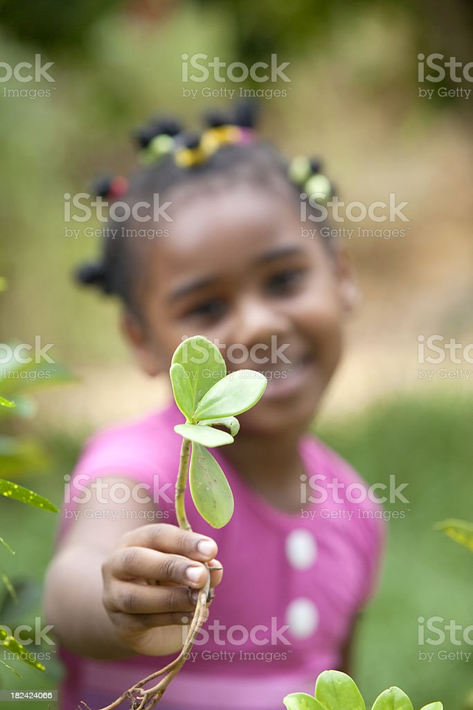 Beautiful African American Little Girl Smiling with a Plant royalty-free stock photo