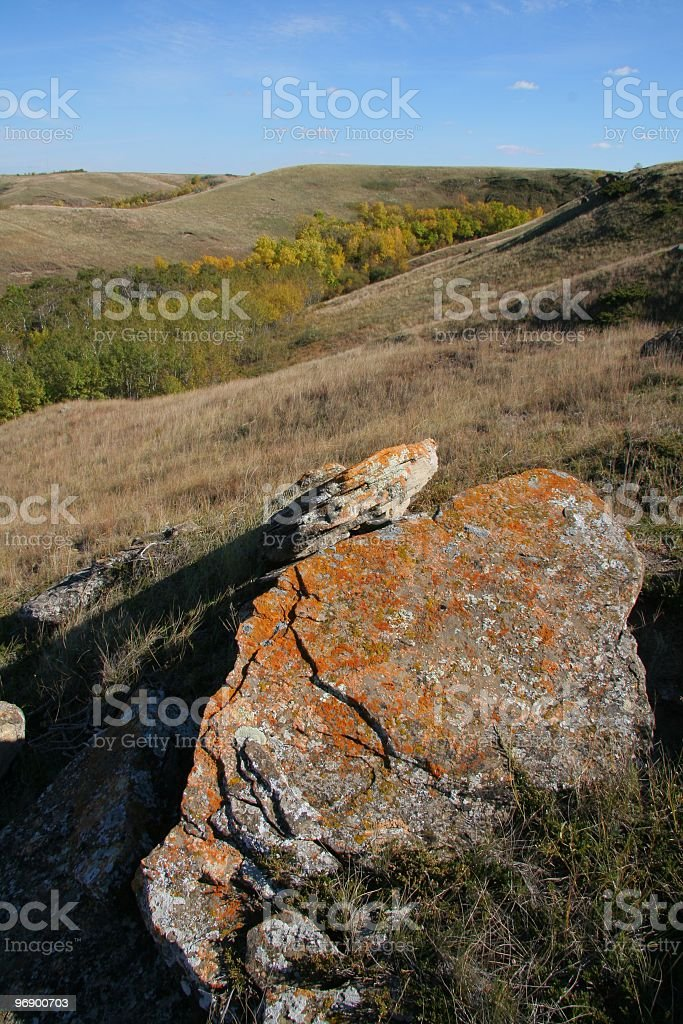 Beautiful Algae Cover Rock Overlooking Coulee stock photo