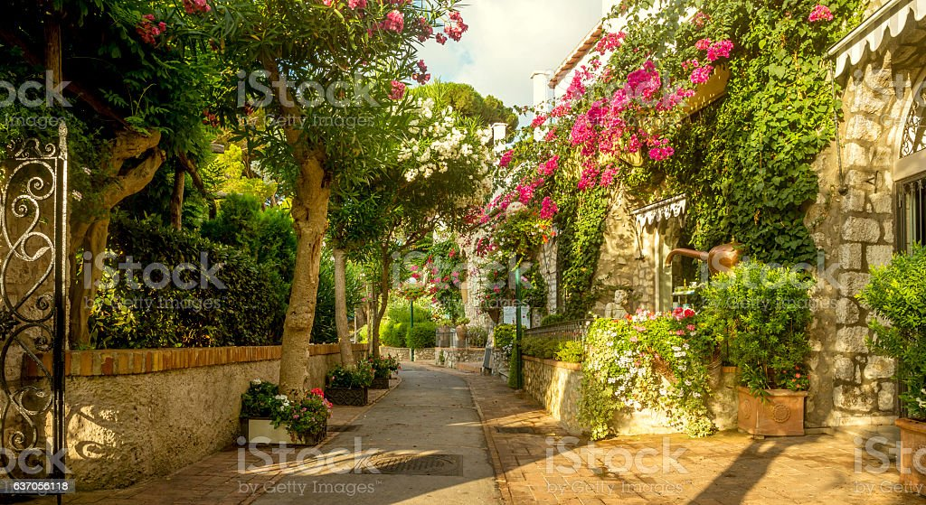 Beautiful alley full of trees and flowers on Capri Island, stock photo