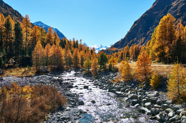Beautiful alpine autumn landscape. stock photo
