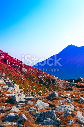 istock Beautiful alpine high mountains peaks, blue sky background. Amazing Mountain hiking paradise landscape, autumn, yellow grass. 1030521664