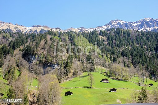Full frame beautiful shot of  Bernese Alps with little house and pine tree background