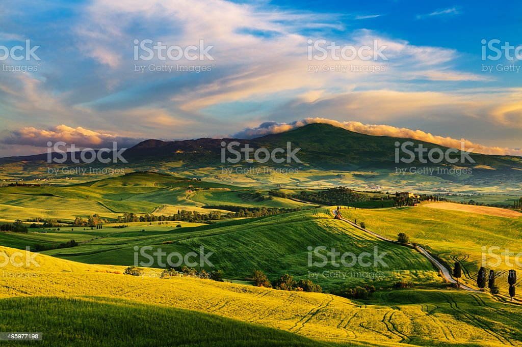 Beautiful and miraculous colors of green spring landscape at sun stock photo