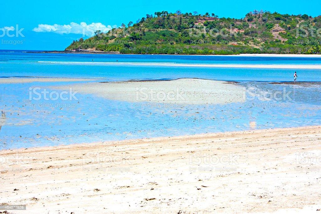 beautiful andilana beach seaweed  indian ocean stock photo